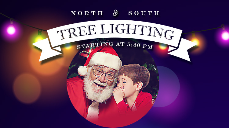 Schofield Barracks North Tree Lighting