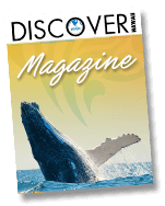 Hawaii-discover-link.png